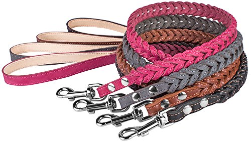 CollarDirect Leather Braided Dog Leash 4ft, Stitched Leather Dog Lead 4 Foot Long, Puppy Leash Small Medium Large Pink Black Brown Grey (2/3 Wide, Black)
