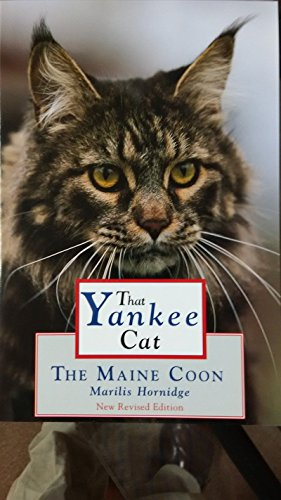 That Yankee Cat: The Maine Coon