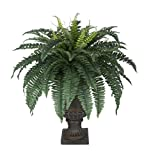 House of Silk Flowers Artificial Fern in Small Brown Urn