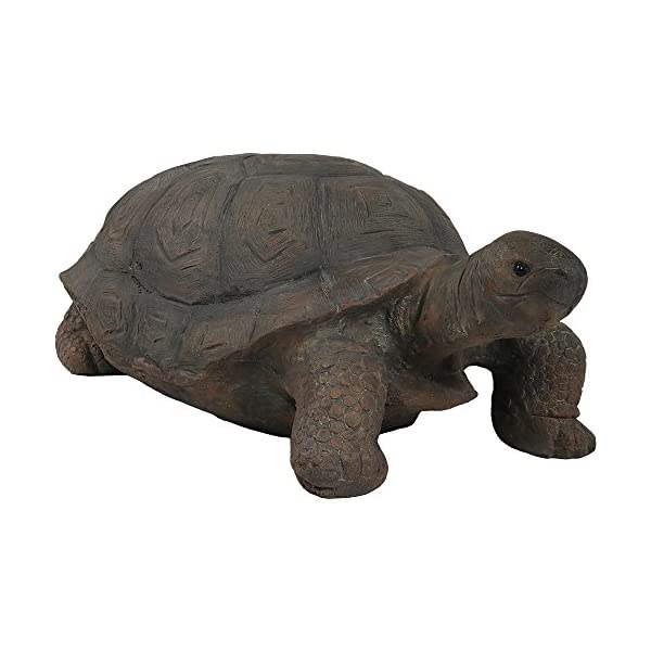 Sunnydaze-Tortoise-Statue-Collection