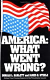img - for America: What Went Wrong? book / textbook / text book