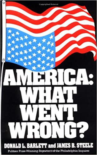 image for America: What Went Wrong?