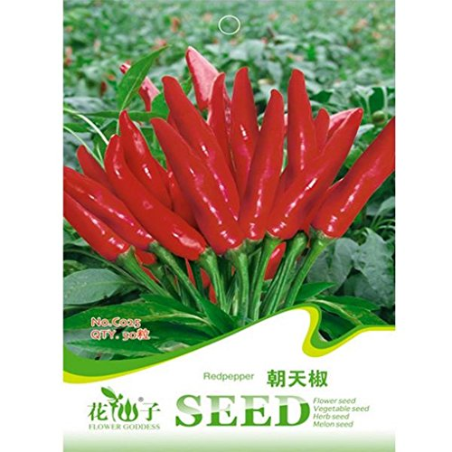 [Garden Spices Red Chili Spice Pepper Vegetable Seeds 50pcs] (Hot Sauce Packet Halloween Costumes)