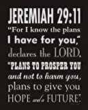 "Jeremiah 29:11 For I know the plans I have for You by Stephanie Marrott 8""x10"" Art Print Poster"