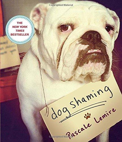 Dog Shaming (Funny Dog)