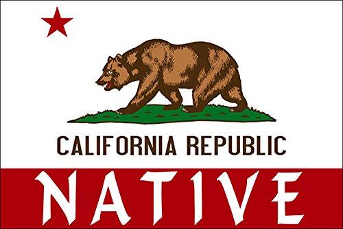 American Vinyl California Flag w/NATIVE Sticker (bear state local bumper)