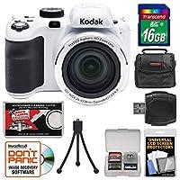 KODAK PIXPRO AZ421 Astro Zoom Digital Camera (White) with 16GB Card + Case + Flex Tripod + Kit