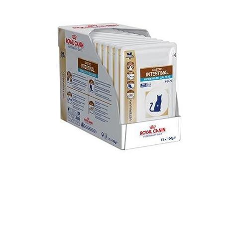 Royal Canin Gastro Intestinal, Alimento Húmedo para Gato, Pack de 12 x 100 g