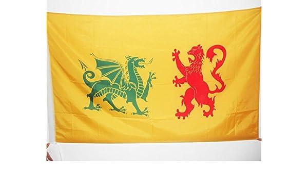 AZ FLAG Bandera de la DINASTÍA Real SUEVA Reino DE GALLAECIA 410-585 90x60cm para Palo - Bandera ESTANDARTE Real 60 x 90 cm: Amazon.es: Hogar