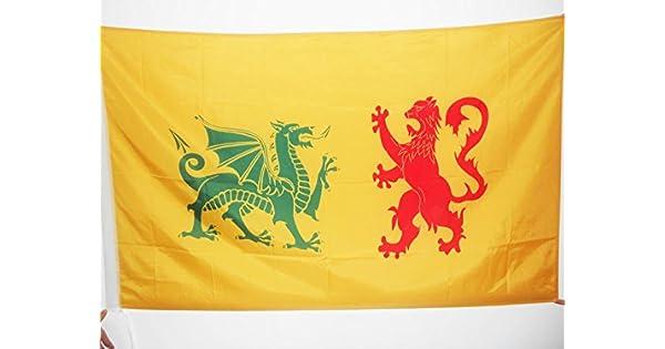 Amazon.com: Reino Unido Bandera de Galicia 410 – 585 3