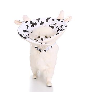 VIDOO Salud De Las Mascotas Recuperación Collar Isabelino Protección Durable Cómodo Gato del Animal Doméstico Collar-L: Amazon.es: Hogar