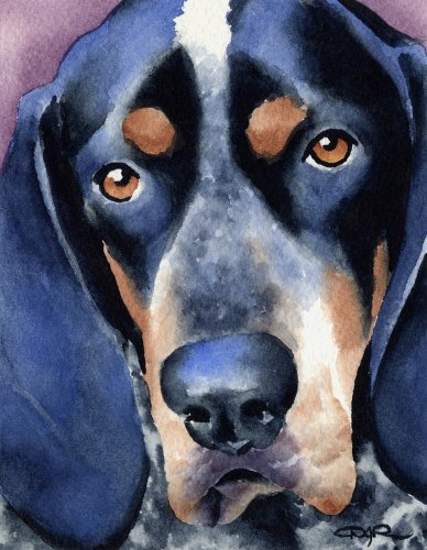 Bluetick Coonhound Dog Art Print by Watercolor Artist DJ Rogers