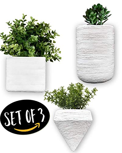 Design Wall Planter - Set of 3. Small Wall Mounted Plant Holder, Ceramic Wall Vase, Geometric Wall Decor. Great for Succulents, Air Plants, Faux Plants, Doon Designs