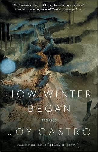 How Winter Began: Stories (Flyover Fiction)