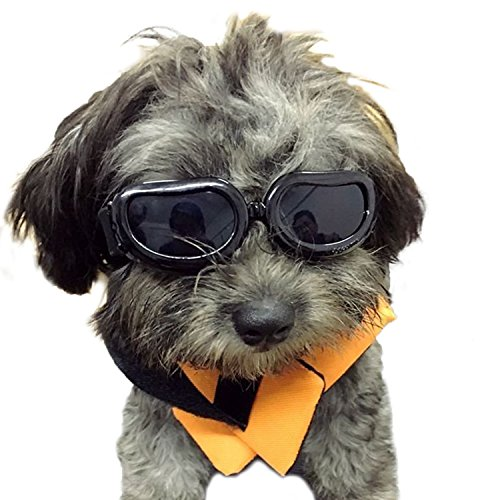 Kailian Dog Goggles Stylish Waterproof Anti-ultraviolet Sunglasses For Doggie Puppy - - Sunglasses Puppy