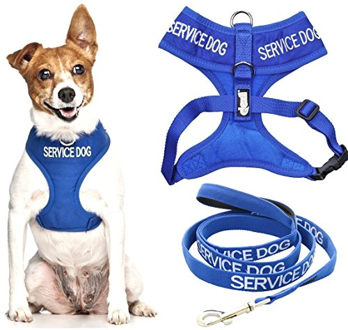 (SERVICE DOG Blue Color Coded Front and Back Ring Small Medium Padded Waterproof Non Pull Vest Dog Harness and 4 6 Foot Leash Sets (Do Not Disturb) PREVENTS Accidents By Warning Others of Your Dog in Advance (Small Harness & 4 Foot Leash))
