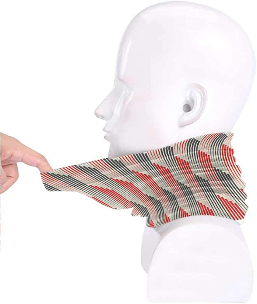 Running etc,for Adult Abstract Scarf Retro Style Bicolor Composition with Stylized Vertical Stripes Futuristic Unisex 3D Printed Scarf Grey and Scarlet for Riding