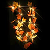 Thanksgiving Decorations Maple-Leaves String Lights Fall Decor Light Fall Garland Christmas Decoration Gift 8.2 Feet 20 LED