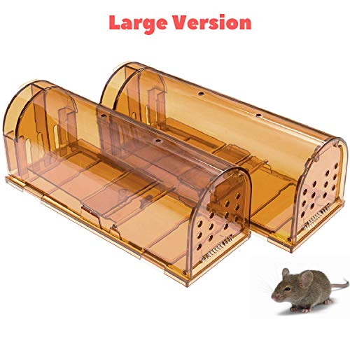 CaptSure 2019 Upgraded Humane Smart Rodent Trap, Kids/Pet Safe, Easy to Set, for Indoor/Outdoor, Reusable, for Small Rats/Moles/Chipmunks/Voles. Best Catcher That Works (Large - 2 Pack)