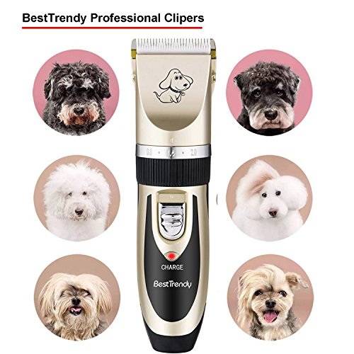 Best Trendy Professional Cat Dog Clippers