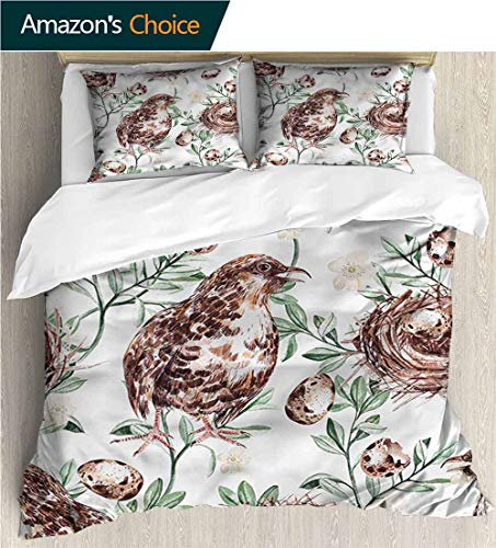 Home 3 Piece Print Quilt Set,Box Stitched,Soft,Breathable,Hypoallergenic,Fade Resistant with 2 Pillowcase for Kids Bedding-Quail Nest and Eggs Spring Branches (80