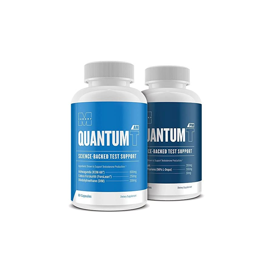 M Theory Quantum T Supplement