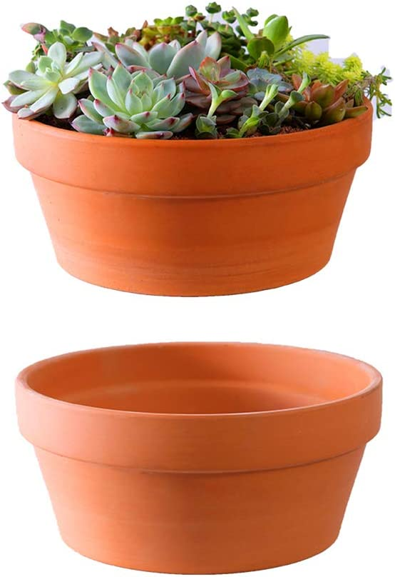Yishang Large Terracotta Pots for Succulent - 10 Inch Cactus Plant Containers Indoor Garden Bonsai Pots with Drainage Hole - Set of 2, Unglazed Clay Ceramic Pottery Planter