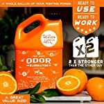 ANGRY ORANGE Ready-to-Use Citrus Pet Odor Eliminator Pet Spray - Urine Remover and Carpet Deodorizer for Dogs and Cats 8