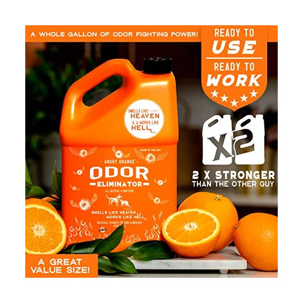 ANGRY ORANGE Ready-to-Use Citrus Pet Odor Eliminator Pet Spray - Urine Remover and Carpet Deodorizer for Dogs and Cats 3