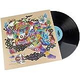 Little Dragon: Machine Dreams Vinyl LP