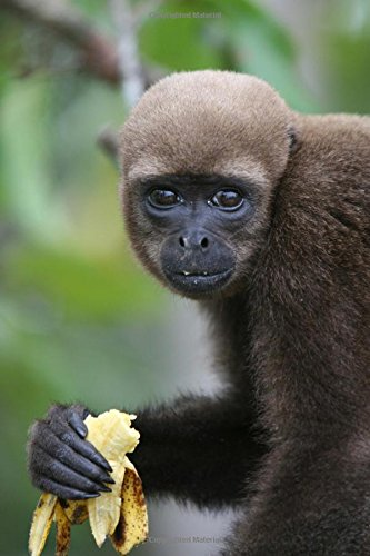 Woolly Monkey with a Banana Journal: 150 page lined notebook/diary
