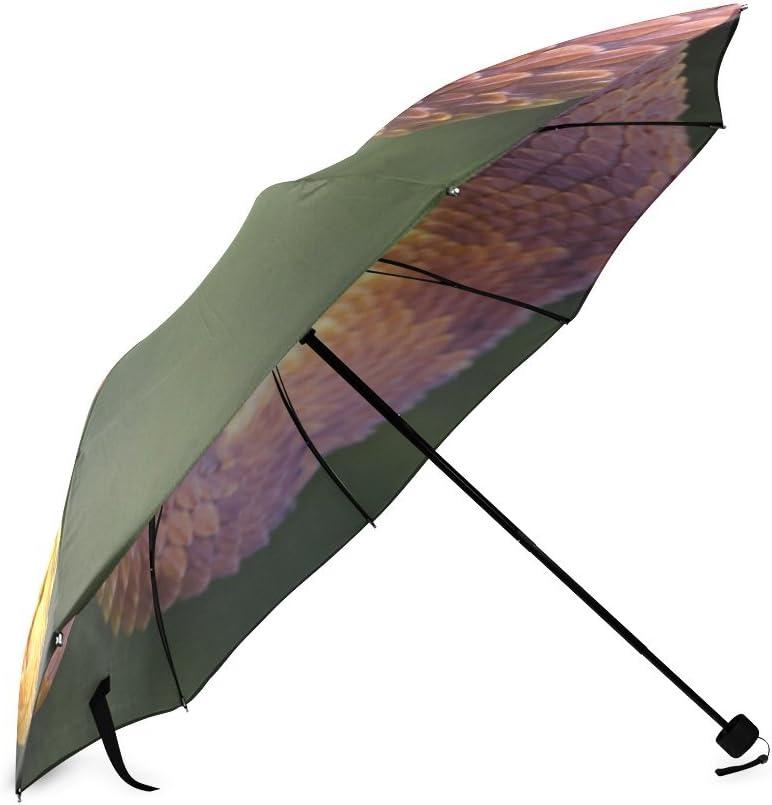 Custom The snake Compact Travel Windproof Rainproof Foldable Umbrella