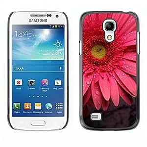 El Oro Entre espinas rojas - Metal de aluminio y de plástico duro Caja del teléfono - Negro - Samsung Galaxy S4 Mini i9190 (NOT S4)