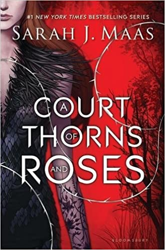 Image result for court of thorns and roses