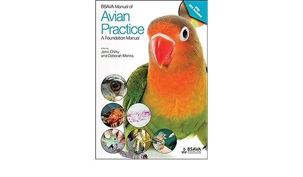 bsava manual of avian practice a foundation manual 9781905319817