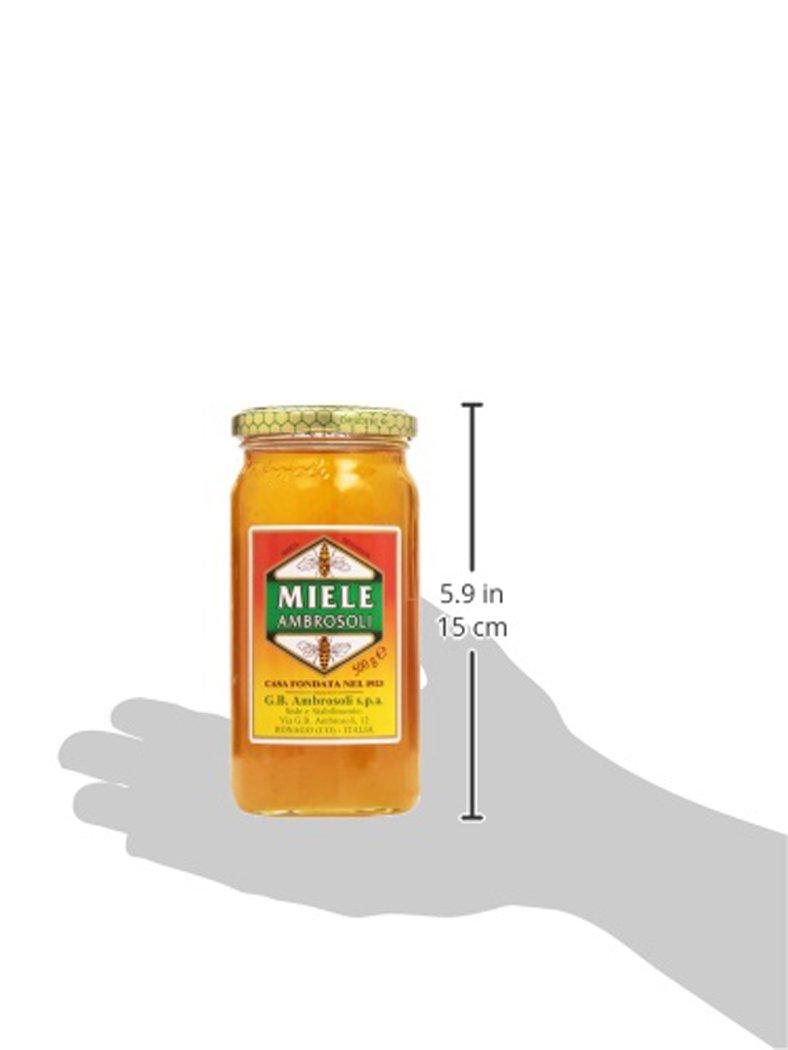 Amazon.com : Honey Ambrosoli Miele From Italy Jar 500 Gr (18 Oz.) : Grocery & Gourmet Food