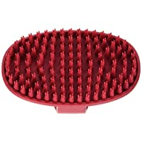 Cepillo de aseo de caucho con asa de lazo Le Salon Essentials