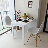 Isasar Wall Mounted Folding Table Space Saver Fold Out Convertible Desk (White)