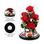 Beauty-and-the-Beast-Rose-Romantic-Rose-for-Women-The-Newly-Designed-Gift-Box-Rose-in-a-Glass-Dome-with-LED-Light-Wooden-Base-for-Wedding-Valentines-Day-Christmas-Halloween-Decorations