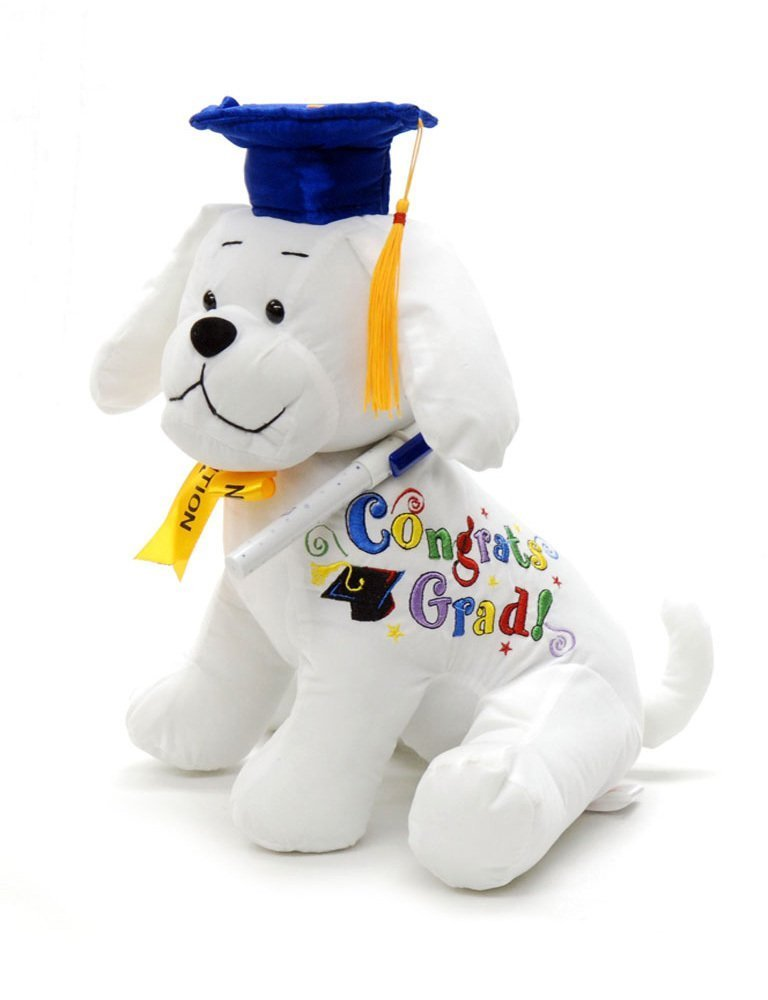 10.5/'/' Plush Teddy Congrats Grad PINK Graduation Autograph Stuffed Dog