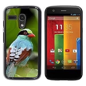 PC/Aluminum Funda Carcasa protectora para Motorola Moto G 1 1ST Gen I X1032 leaves summer tropical bird nature / JUSTGO PHONE PROTECTOR