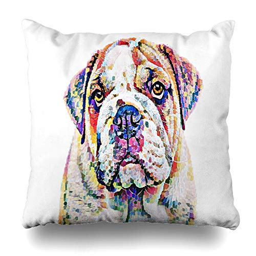 Ahawoso Throw Pillow Cover Blue American Abstract Bulldog Flower Breed Bull Dog Color Craft Nature Decorative Pillowcase Square Size 20