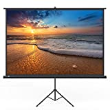 Kyпить Projector Screen, TaoTronics Indoor and Outdoor Movie Screen 120 Inch Diagonal 4:3 with a Premium PVC Matte Design (Wrinkle-Free, Easy to Clean, 1.1 Gain, 160 Degree Viewing Angle) на Amazon.com
