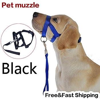 Amazon Com Toogoo Adjustable Dog Puppy Safety Muzzle