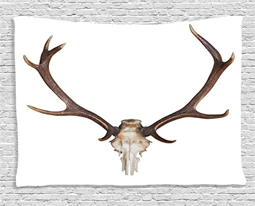 Antlers Decor Tapestry by Ambesonne, Antlers of a Huge Stag Skeleton Big Bone Horn Hunter Style Home Decorating Print, Wall Hanging Art for Bedroom Living Room Dorm, 60 W X 40 L, Brown and Beige