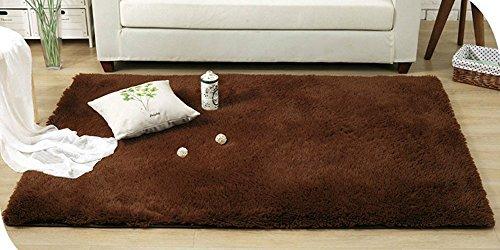 DODOING 3-5 Days Delivery Long Large Carpet Shaggy Soft Carpet Area Rug Slip Resistant Door Floor Mat for Living Room Kids Bedroom,60cmx120cm(23.6x47.2 - Day 3 Shipping Usps