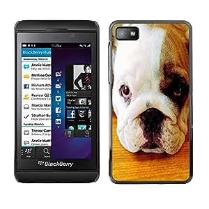 PC/Aluminum Funda Carcasa protectora para Blackberry Z10 American Pit Bull Terrier Bulldog Puppy / JUSTGO PHONE PROTECTOR