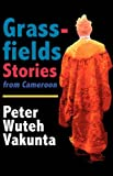 Grassfields Stories from Cameroon, Peter W. Vakunta, 9956558117