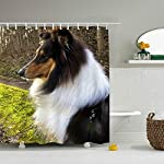 Rough Collie Shower Curtain, Extra Long Bath Decorations Bathroom Decor with Hooks Marriage Gifts for Men and Women in Art Print Polyester Fabric 65 x 72 inch 6