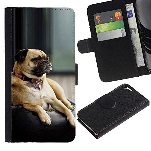 LASTONE PHONE CASE / Luxe Cuir Portefeuille Housse Fente pour Carte Coque Flip Étui de Protection pour Apple Iphone 5 / 5S / Pug Sleepy Tired Small Dog Shorthair